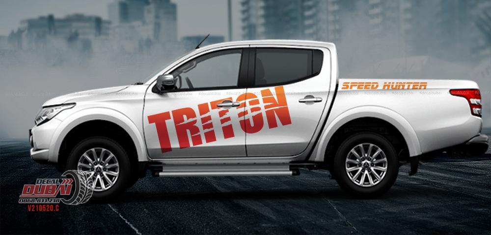 Tem xe Triton 0019 550k