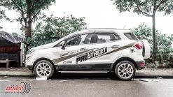 Tem-Xe-Ecosport-0003.3-650k