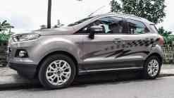 Tem-Xe-Ecosport-0007.2-850k